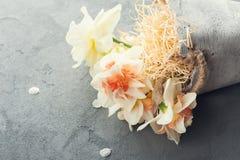 Daffodils w kwiatu garnku na zmroku betonują tło Zdjęcia Royalty Free