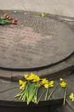 Daffodils. Warsaw, Poland - April 19, 2015: 72nd anniversary of the Warsaw Ghetto Uprising. Yellow daffodils at the Memorial to the Warsaw Ghetto Uprising by royalty free stock photography