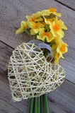 Daffodils with wicker heart. Bunch of daffodils with wicker heart on a wooden background Royalty Free Stock Photography