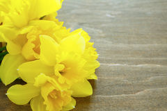 Daffodils on wooden boards Stock Photos