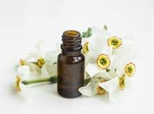 Daffodlils essential oils bottle Stock Image