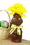 Daffy Easter Bunny Royalty Free Stock Photo
