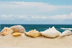 Dag bij het strand stock afbeeldingen