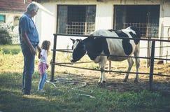 Dag bij landbouwbedrijf royalty-vrije stock foto's