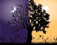 Dag en nacht violette boom vectorachtergrond Stock Afbeeldingen