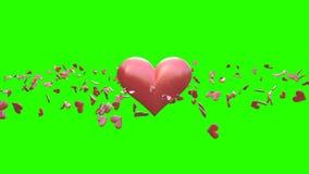 Dag för valentin` s på en grön skärm arkivfilmer