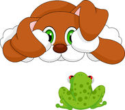 Dag and frog cartoon Stock Image