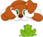 Dag and frog cartoon Stock Image