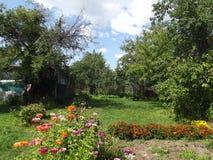 Dag i det bevuxna gamla trädgårds- soligt Royaltyfri Bild