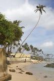 Dag in Sri Lanka Royalty-vrije Stock Afbeeldingen