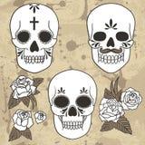 Dag van de Doden Reeks schedels Vector illustratie Stock Foto
