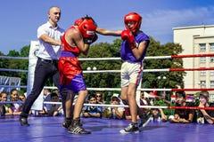 Dag van Fysieke Cultuur en Sporten in Uzhgorod Stock Fotografie