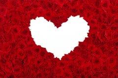 Dag van valentijnskaarten nam hart toe Stock Foto