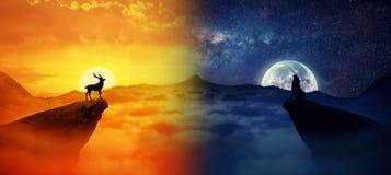 Dag vs natt Arkivbild