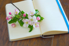 Dagbok för blommablomninglyriska dikter Arkivfoto