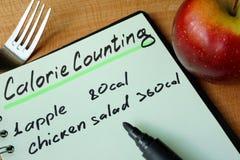 Dagbok med rekord- räkna för kalori arkivbild