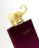 Dagbok och elefant Arkivbilder
