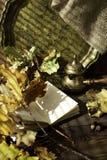 Dagboken, hösteksidor och turkiskt kaffe lägger in på en träbakgrund kopiera avstånd cozy isolerad white för höst begrepp arkivbilder