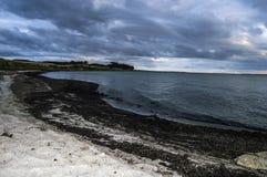 Dageløkke strand Arkivbild