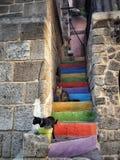 Dagen för Rodos Grekland multicolorskatter stenar ingen sommarvägg för folk utomhus trappa Royaltyfri Fotografi
