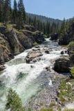 Dagger Falls em Frank Church Wilderness de Idaho foto de stock