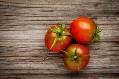 Daggiga röda tomater på det lantliga träbrädet Royaltyfria Bilder