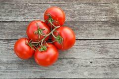 Daggiga röda tomater på det lantliga träbrädet Arkivbild