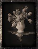 仍然dagguereotype生活 库存图片