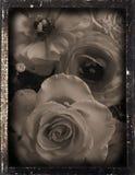 dagguereotype repro婚礼 免版税库存图片
