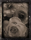 Dagguereotype repro 'wedding'. Daguereotype reproduction of a vintage interior, Daguerreotype Photography was very popular between 1839 to 1855, images were Royalty Free Stock Images