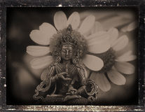 Dagguereotype Still-Life Stock Photo