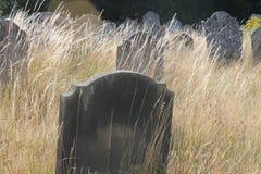 Dagkyrkogård Royaltyfria Foton
