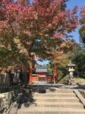 Daglichtmening aan rode poort die in een Japanse tempel binnengaan stock foto's