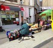 Dagliga Tbilisi Royaltyfri Fotografi
