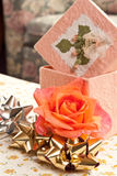 dagmammor Royaltyfria Bilder