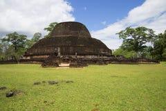 Dagoba帕布鲁Vejer废墟  Polonnaruwa,斯里兰卡 免版税库存照片