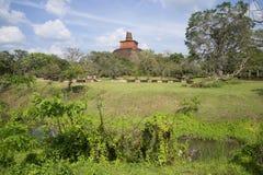 Dagoba Jetavana的看法在市的考古学公园阿努拉德普勒 斯里南卡 免版税库存照片
