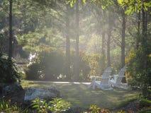 dagpark Arkivfoton