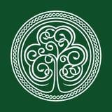 dagpatrick s st Treklöver på en grön bakgrund Royaltyfria Bilder