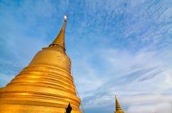 Dagplats av den guld- chedien Royaltyfria Bilder