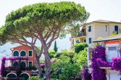 Dagsljussikt till ett rött hus med ett stort grönt träd nära det Fotografering för Bildbyråer