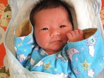 dagspädbarn tre royaltyfri fotografi