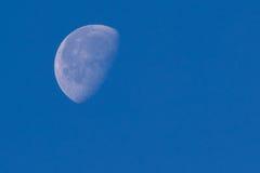 Dagtidsikt av månen Arkivbilder