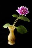 Dahlia royalty-vrije stock foto
