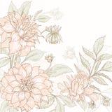 Dahlia background 2. Vintage flower background. Beautiful invitation card with dahlia flower Royalty Free Stock Image