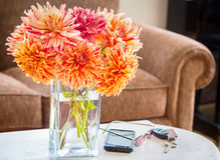 Dahlia Bouquet Royalty-vrije Stock Fotografie
