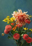 Dahlia Bouquet royaltyfria foton