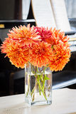 Dahlia Bouquet Stock Photography