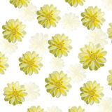 Dahlia flower vector background Royalty Free Stock Images
