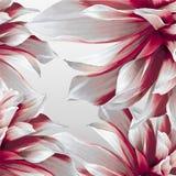 Dahlia futuristische achtergrond Royalty-vrije Stock Foto's
